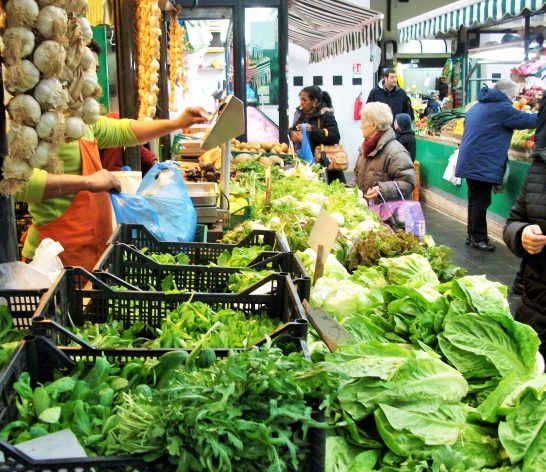 L' Italia ha 'l'agricoltura più verde' d'Europa, ma non è sostenibile